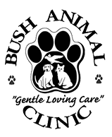 Bush Animal Clinic